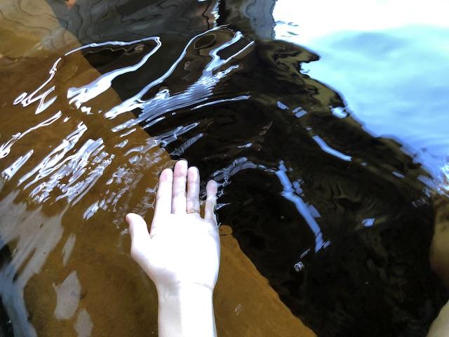 養老温泉の黒湯